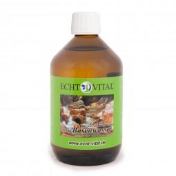 ECHT VITAL BASENWASSER - 1 Flasche mit 500 ml