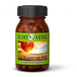 ECHT VITAL COENZYM Q10 - 1 Glas mit 60 Kapseln