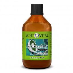 ECHT VITAL LIPOSOMALES VITAMIN B KOMPLEX - 1 Flasche mit 250 ml