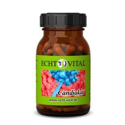 ECHT VITAL ANTI CANDIDA - 1 Glas mit 90 Kapseln