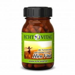 ECHT VITAL Hirn Vital - 1 Glas mit 60 Kapseln