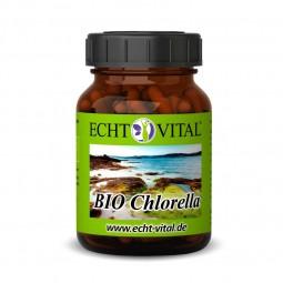 ECHT VITAL Bio Chlorella - 1 Glas mit 300 Presslingen