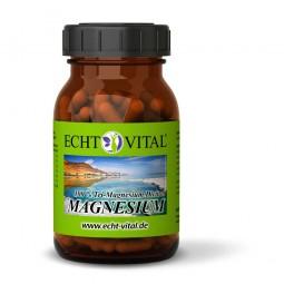 ECHT VITAL MAGNESIUM - Tri-Magnesium Dicitrat - 1 Glas mit 90 Kapseln