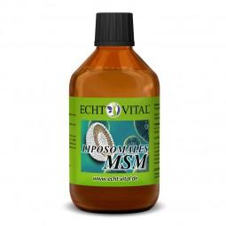 ECHT VITAL LIPOSOMALES MSM - 1 Flasche mit 250 ml
